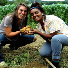 Image of a white student with light brown hair and a dark-skinned student with black hair crouching down in the dirt of Green Mountain College's Cerridwen Farm. They hold crops in their outstretched hands. Both are smiling and wearing T-shirts and blue jeans.
